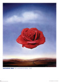 Dali - Meditative Rose Posters by Salvador Dali