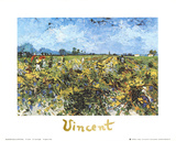 The Green Vineyard Prints by Vincent van Gogh