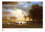 Buffalo Trail Posters by Albert Bierstadt
