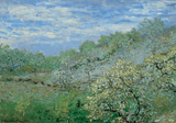 Baume in Blute Posters by Claude Monet