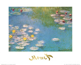 Nymphéas, 1908 Affiches par Claude Monet