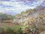 Baume in Blute Art by Claude Monet