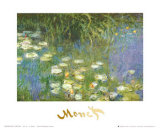 Water Lilies of the Orangerie as Giverny Pósters por Claude Monet
