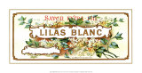 Lilas Blanc Posters
