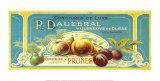 Confitures De Prunes Luxe Prints