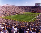 Michigan Stadium Photo