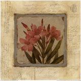 Oleander Fragment Print by Pamela Murray