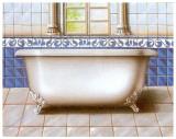 Bathtub IV Poster by  Manso