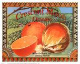 Crescent Moon Oranges Prints by Miles Graff