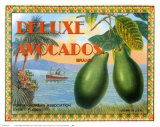 Deluxe Avacados Poster by Miles Graff
