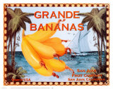 Grande Bananas Prints by Miles Graff