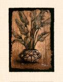 Exotic Flora IV Plakater af Monica Stewart