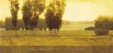 Timeless Meadow Poster by Andrzej Skorut