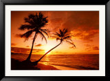 Tropical Beach - Sunset Prints