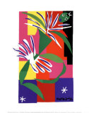 Creole Dancer Prints by Henri Matisse