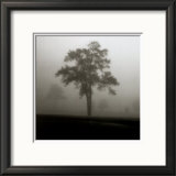 Fog Tree Study I Print by Jamie Cook