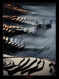 China: campos de arroz de Yunnan Láminas por Yann Layma