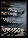 China, Yunnan Rice fields Prints by Yann Layma