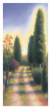 Tuscan Road II Prints by David Wander