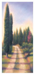 Tuscan Road I Posters by David Wander