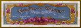 Violette de Cannes - Gold Trim Umocowany wydruk autor Susan W. Berman