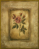 Savin Rose - mini - Gold Trim Mounted Print by Kimberly Poloson