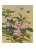 Bees and Garden Blossoms Posters
