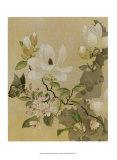 Magnolie und Schmetterling Kunstdrucke