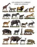 Animaux d'Afrique Affiche