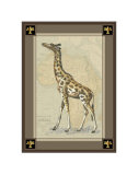 Giraffe with Border I Poster