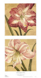 Blooming Wonder Petites Posters by Judy Shelby