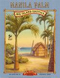 Manila Palm Prints