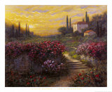 Jardn toscano Lminas por Jon McNaughton