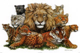 Gros chats Poster par Peter Kull