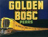 Golden Bosc - Fruit Label Print