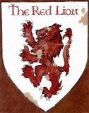 Le lion rouge Posters par David Marrocco