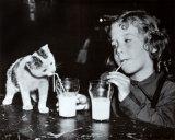 Milk Buddies Photo