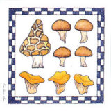 Mushrooms Prints by Karyn Frances Gray
