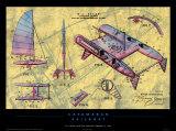 Catamaran Sailboat Posters