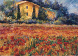 Linda Lee - St. Remy Poppies Obrazy