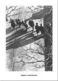 Promenade 1934 Posters by Heinrich Heidersberger