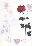 Rose Prints by Lucie Tennant