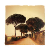 Viaggio I Prints by Amy Melious