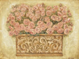 Pink Roses Print by Eva Misa