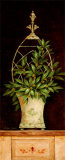 Olive Topiary II Print by Pamela Gladding