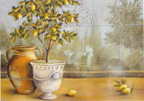 Lemon House near Amalfi Print by M. Patrizia