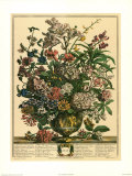 July Poster by Robert Furber