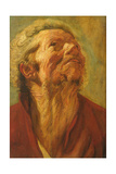 Study of a Head, or Head of an Apostle, C.1620 Giclee Print by Jacob Jordaens