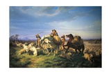 Flock, 1861 Giclee Print by Filippo Palizzi