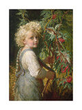 Gathering Red Berries Giclee Print by Karl Wilhelm Friedrich Bauerle